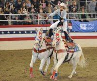SharpSeating Equestfest